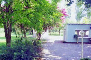 giardino_provenzale_villa_ohara